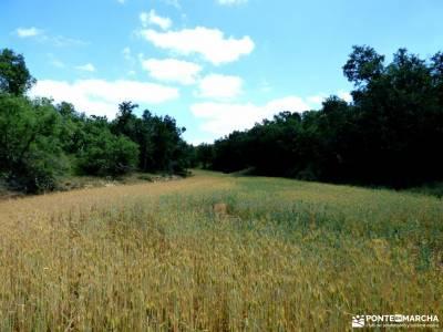 Sedano,Loras-Cañones Ebro,Rudrón;meandro de melero actividades singles refugio de gredos actividad